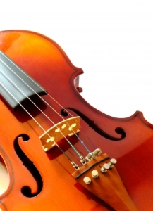 Violin closup