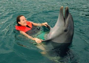 www-oceanadventure-com