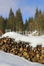 snow on woodpile